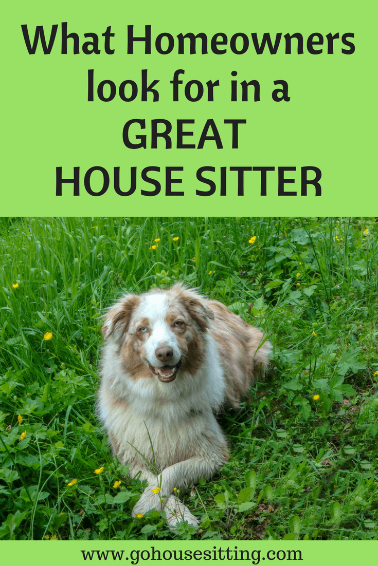 What Homeowners Look for in a Great House Sitter. It is important to understand what homeowners look for when they advertise for a house sitter. We asked a number of homeowners for their feedback. Click to learn what is important to a homeowner.